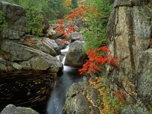 Río Bouquet (Adirondack Park, Nueva York)