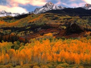 Los colores del otoño bajo unas montañas