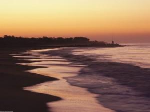 Playa en Santa Cruz (California)