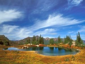 Pequeño lago bajo un cielo azul