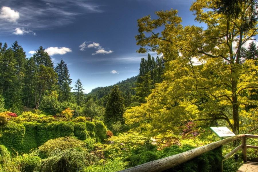 Vista de un espléndido parque