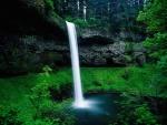 Hermosa cascada en el Parque Estatal Silver Falls (Oregón)