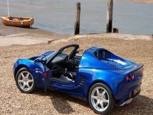 Lotus azul en el muelle