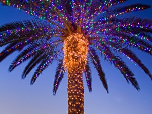 Palmera adornada con luces de Navidad