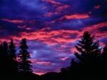 Bonito cielo en Alberta (Canadá)