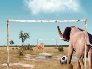 Fútbol divertido entre un elefante y un león