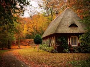 Casa rodeada de árboles otoñales