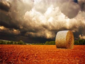 Rollo de paja bajo las nubes oscuras