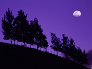 Luna en un cielo púrpura