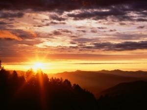 Sol brillando al amanecer
