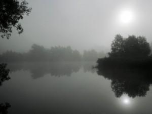 Niebla y sol sobre el lago