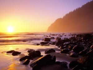 Sol iluminando la playa rocosa