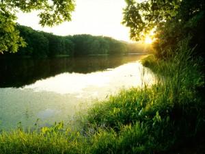 Lago Schlamm (Clark State Forest, Indiana)