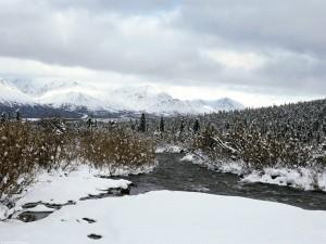 Nieve en Alaska