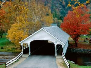 Árboles otoñales junto al puente cubierto