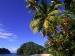 Playa en Trinidad