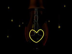 El amor en una bombilla