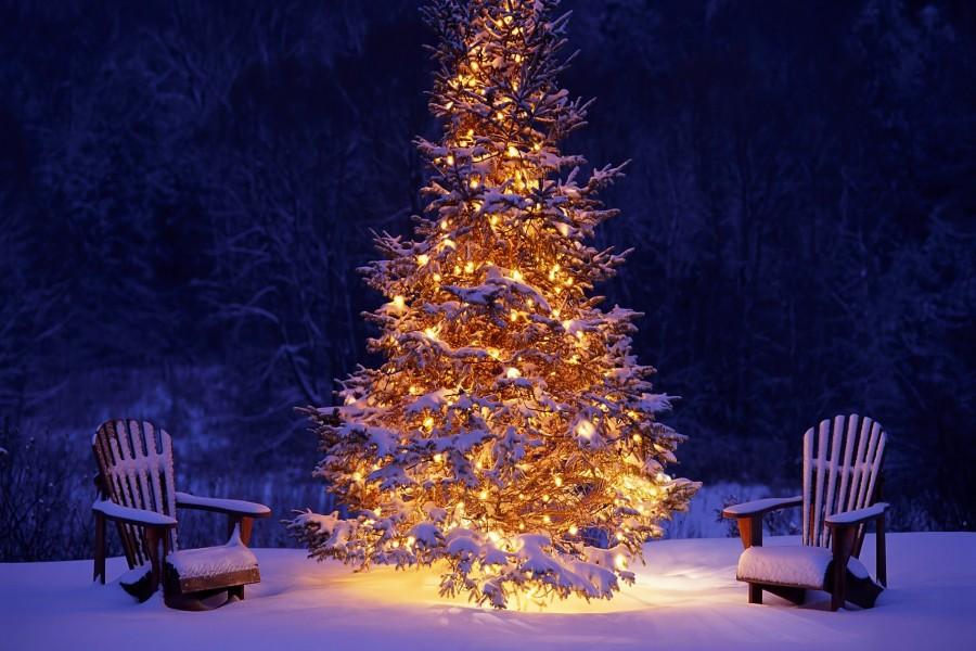 Dos sillas de madera cubiertas de nieve junto a un árbol de Navidad