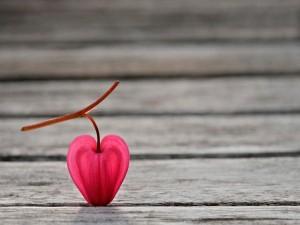 Una flor con forma de corazón