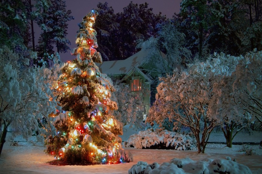 Arbol de Navidad nevado
