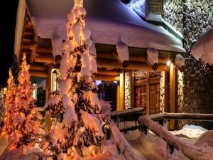 Fuerte nevada sobre los árboles de Navidad