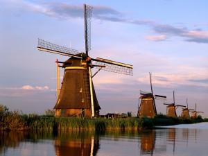 Red de molinos de Kinderdijk-Elshout (Paises Bajos)