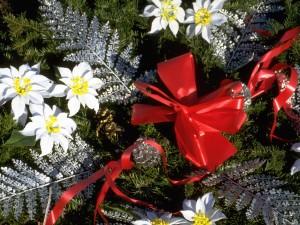 Lazo rojo y flores blancas en un adorno para Navidad