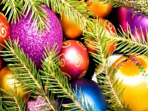Bolas de Navidad y ramas de pino