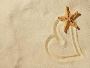 Estrella de mar sobre un corazón de arena