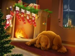 Perrito esperando la Navidad