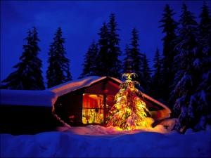 Árbol de Navidad junto a una cabaña