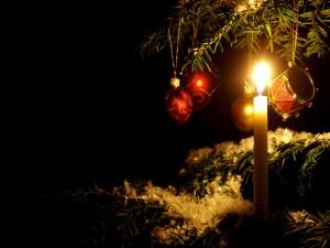Vela en el árbol de Navidad