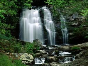 Cascada en el Parque Nacional de las Grandes Montañas Humeantes (Tennessee y Carolina del Norte)