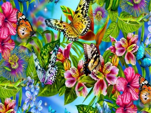 Atractivas mariposas de varios colores