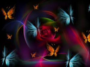 Mariposas de colores hermosos