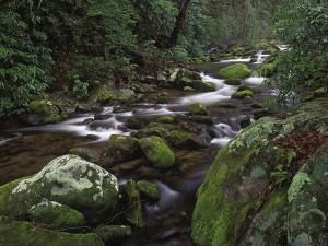 Río poco caudaloso