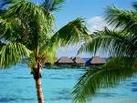 Vacaciones en una playa tropical