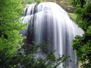 Bonita cascada en Oregón