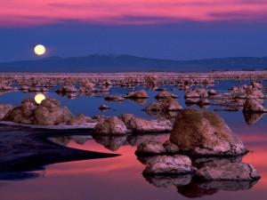 Hermosa luna llena reflejada en el agua