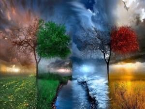 Las estaciones en una sola imagen