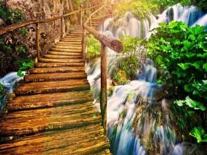 Puente de madera sobre una cascada