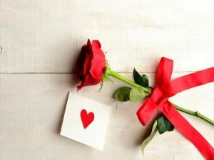 Rosa y una nota de amor