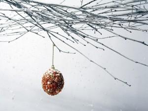 Bola de Navidad colgada de una rama desnuda