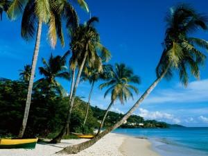 Botes en la arena de la playa