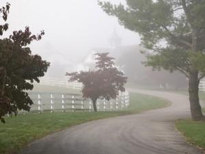 Niebla sobre la carretera