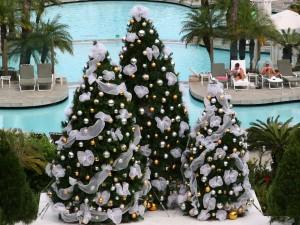 Árboles de Navidad junto a una piscina