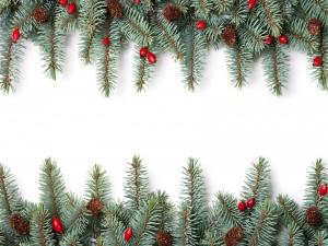 Ramas de un árbol de Navidad