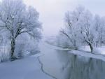 Frío invierno en el campo
