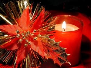 Hermosa decoración para las fiestas navideñas