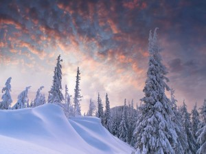 Hermoso lugar nevado al amanecer